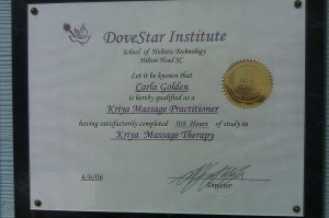Dovestar School of Holistic Technology Certification