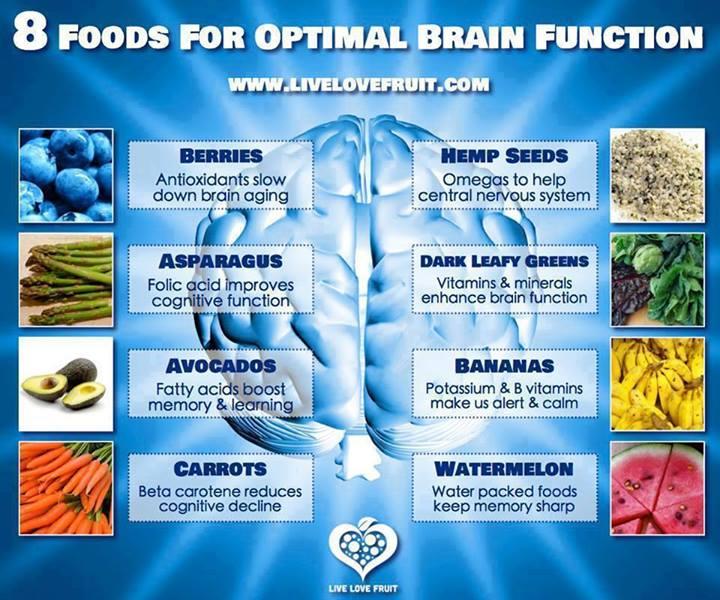 Best Foods For Your Nervous System