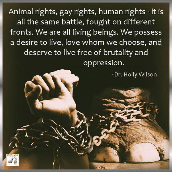 Famous Animal Rights Quotes: 21 Previously Unknown Reasons Why The World Needs You To