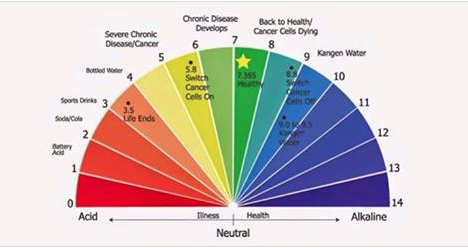 There Are Many Acid Alkaline Charts Available To You With A Simple Google Search They Will All Vary Slightly Some Diffeiate Between Cooked And