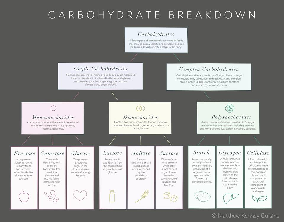 simplest form in which carbohydrates break down in the body  Know Your Complex, Simple, and Refined Carbs
