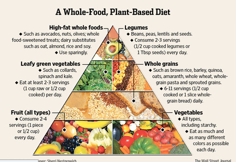 Whole Food Plant Based Diet Vs Vegan